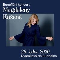 Benefiční koncert v Rudolfinu
